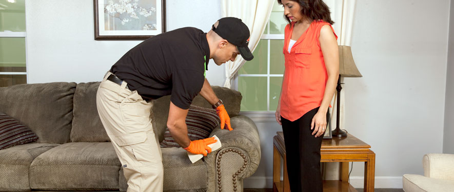 Pittsburgh, PA carpet upholstery cleaning